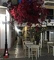 Lefkada, the beloved island.jpg