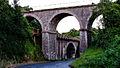 Les deux Ponts du Chemin des Courses Cesson St Brieuc.jpg