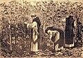 """Les merveilles de l'industrie, 1873 """"Les moines bourguignons cultivant la vigne, au moyen âge"""". (4305564087).jpg"""