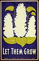 Let them grow LOC 6629874647.jpg