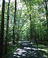 Loantaka Brook Reservation bikeway pathway through woods.jpg