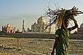 Local Lady at Taj.jpg