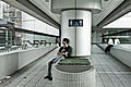Lonely (6143853923).jpg
