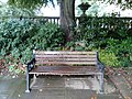 Long shot of the bench (OpenBenches 2281-1).jpg