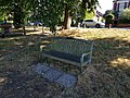 Long shot of the bench (OpenBenches 7683-1).jpg
