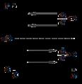 Lotka-Volterra equations isocline method 2.png