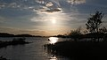 Lough Leane, Killarney National Park, Ring of Kerry (506672) (27759877093).jpg