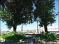 Loule (Portugal) (50390648533).jpg