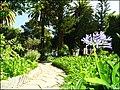 Loule (Portugal) (50390654408).jpg