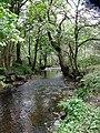 Luggie Water - geograph.org.uk - 1534722.jpg