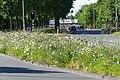 Lunetstraat, Breda P1490062.jpg
