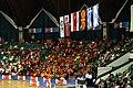 Macedonian basketball fans.jpg