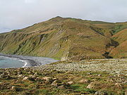A view over the Macquarie Island bluffs