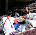 Mae sot dried fish 01.jpg