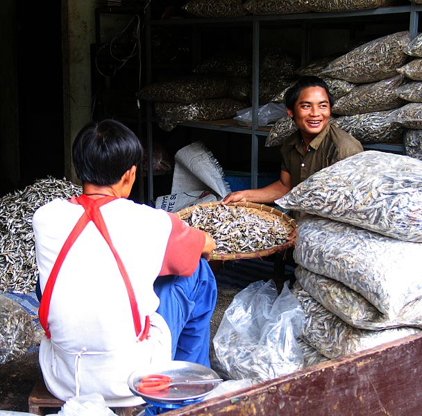 File:Mae sot dried fish 01.jpg
