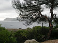 Mallorca-05-0152.JPG