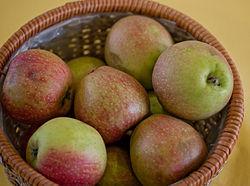 hur många äppelsorter finns det i sverige