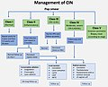 Management of Cervical Intraepithelial Neoplasia.jpg