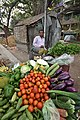 Manaranjan Karmakar - Vegetable Vendor - Padmapukur Water Treatment Plant Road - Howrah 2018-03-24 0217.JPG