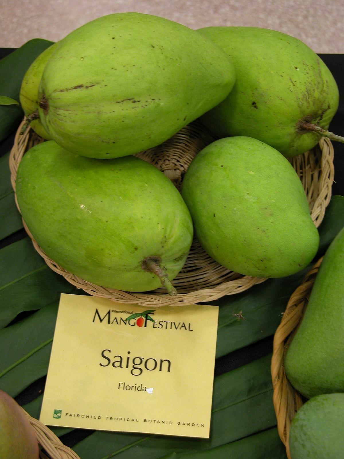 Saigon Mango Wikipedia