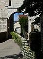 Marnay - château - flower.jpg