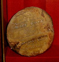 Mary rose cannon ball found by John Deane.jpg