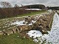 Mediaeval circular kiln in Hadrian's Wall - geograph.org.uk - 1724582.jpg