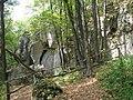 Medobory Nature Reserve (3).JPG