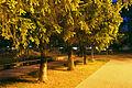 Memory Park in Belgorod 35.JPG