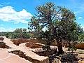 Mesa Verde National Park-36.jpg
