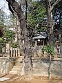 Mitake Shrine (御嶽社) in Daita Hachiman Shrine (代田八幡神社) - panoramio.jpg