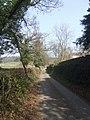 Monument Lane - geograph.org.uk - 1214986.jpg