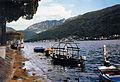 Morcote lake with ducks and boats.jpg