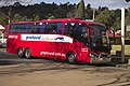 Moreland Bus Lines (7376 AO) Irizar 'Century 3900' bodied Scania K380IB in Greyhound Australia livery at Gundagai Coach Terminal.jpg
