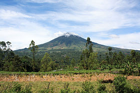 Mount Cikuray from Cisurupan.JPG