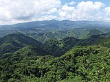 Mount Daruma 20100527 (b).jpg