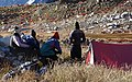 Mountain friends watching flock of Blue Sheep WTK20150921-DSC00169.jpg