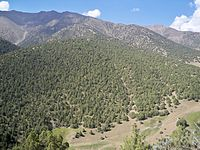 Mountains located South of Isfana.JPG
