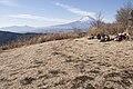 Mt.Fuji from Mt.Yaguradake 07.jpg