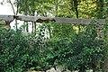 Mur du parc de Belleville effondré le 12 août 2015 - 3.jpg