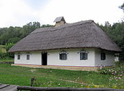 Museum of Folk Architecture and Ethnography in Pyrohiv - old house - 2443-2.jpg