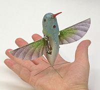 Nano Hummingbird.jpg