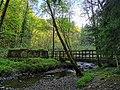 Nant-y-Ffrith footbridge.jpg