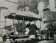 Native 'Bus of the More Refined Kind, Drawn by Two Asses, in the Ataba-el-Khadra. (1911) - TIMEA.jpg