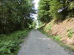 Nebenbahn Wennemen-Finnentrop (5829728346).jpg