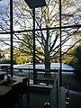 Neuy Museum, Blick in den Garten.jpg