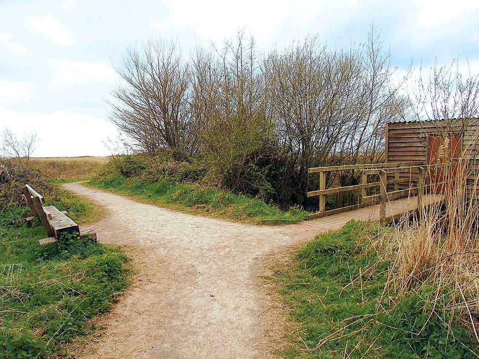Newport Wetlands RSPB Reserve Bird Hide And Bench