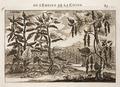 Nieuhof-Description-générale-de-la-Chine-1665 0866.tif