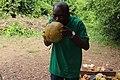 Nigerian man drinking the coconut water.jpg
