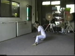 Kosei Nishihira Okinawan karateka
